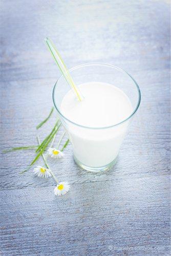 verre de lait ambiance bio paquerettes