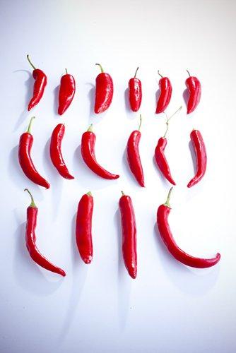 photographie professionnelle,piments rouges alignés