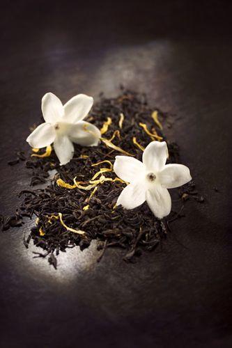 arômes de chocolat, thé jasmin