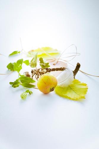 pomme-et-plume-avec-feuillage
