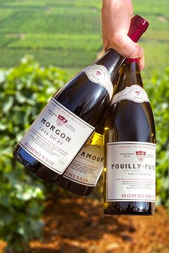 Grands-Vins-Boisset-Momessin-mains-vignes