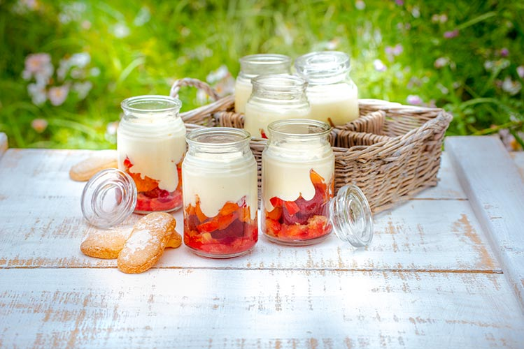 dessert-tiramisu-abricot-et-framboises-recettes-de-pique-nique-pour-companion-juin