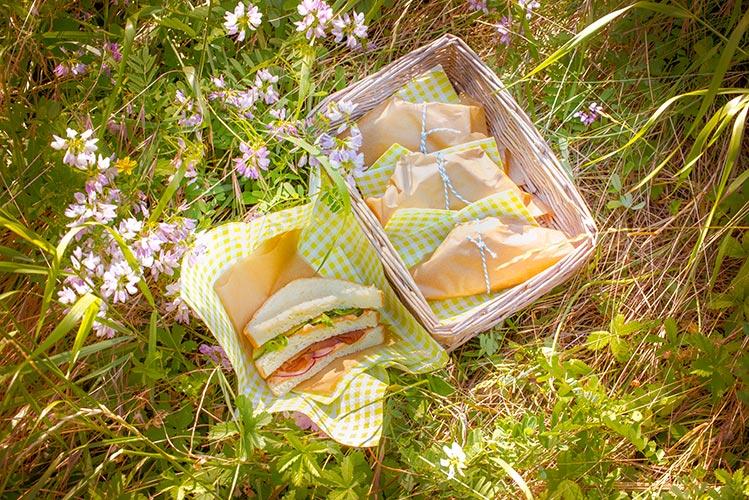 sandwich-pain-de-mie-maison-et-tomates-pour-picnic-juin-companion-moulinex