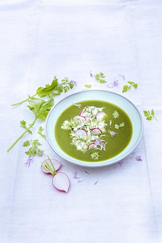 soupe-de-cerfeuil-et-radis-recettes-entrées-aux-herbes